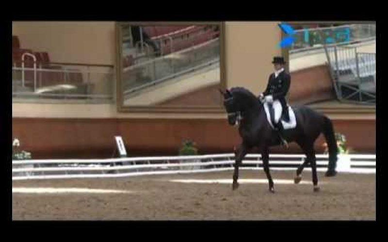 Edward Gal e Glocks Undercover – Grand Prémio – Saumur