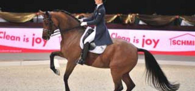 Riwera de Hus has been elected «Horse of the Year 2012 »