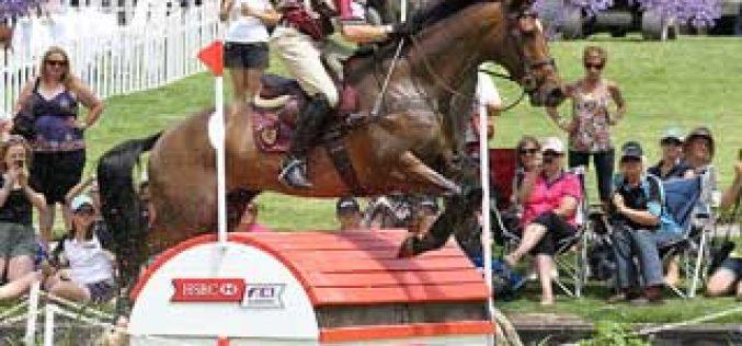 Craig Barrett and Sandhills Brillaire make history in Adelaide