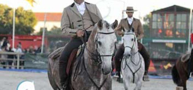 Campeonato Nacional de Equitação de Trabalho decide-se na Beloura