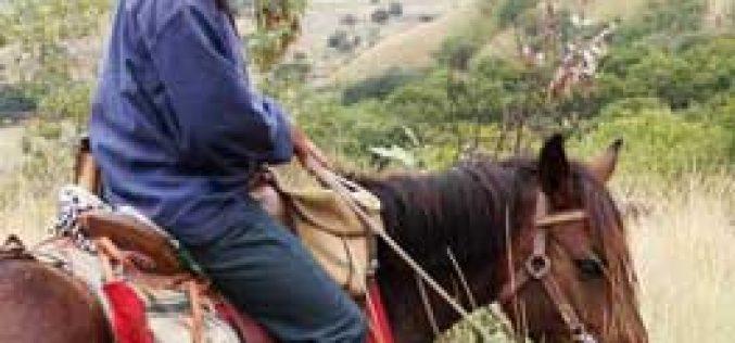 Gwladys Lecarpentier atravessa Portugal a cavalo
