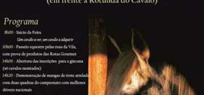 XVIII Feira do Cavalo em Lousada