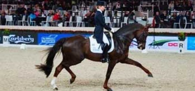 Helen Langehanenberg beats Adelinde in the Grand Prix at Mechelen (video)