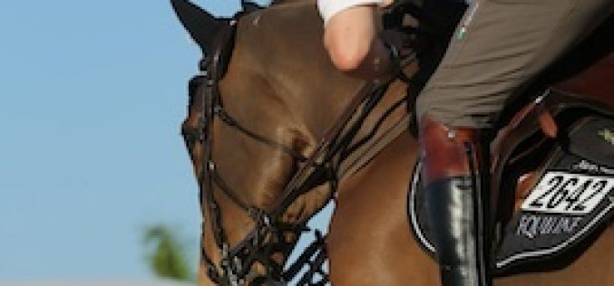 Nick Skelton and Heracross Triumph in the speed class