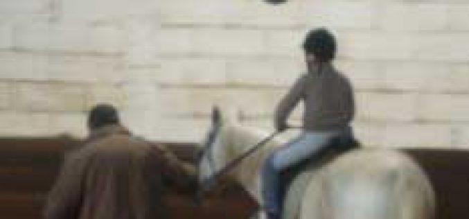 O 1º Encontro de Equitação/Equitação Adaptada foi um sucesso