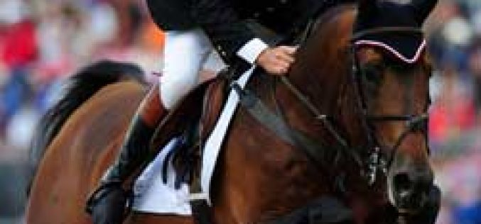 Big Star: 2012 KWPN Horse of the Year