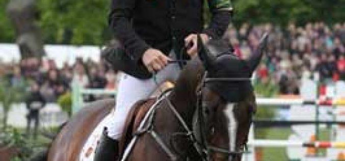 Horses in Focus: Casall La Silla