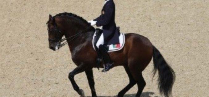 Gonçalo Carvalho, o virtuosismo da equitação portuguesa