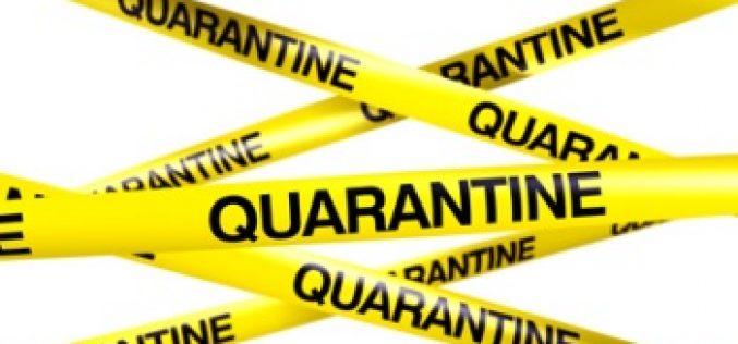 Equine herpes outbreak quarantines Florida show grounds
