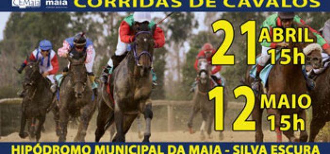 Campeonato Nacional de Corridas de Cavalos inicia-se na Maia!