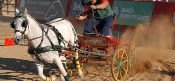 Campeonato regional de derby´s de atrelagem arranca na Bordeira