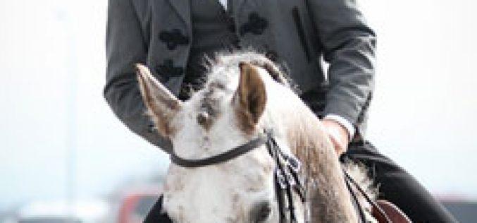 Resultados: I Jornada do XV Campeonato Nacional de Equitação de Trabalho 2013