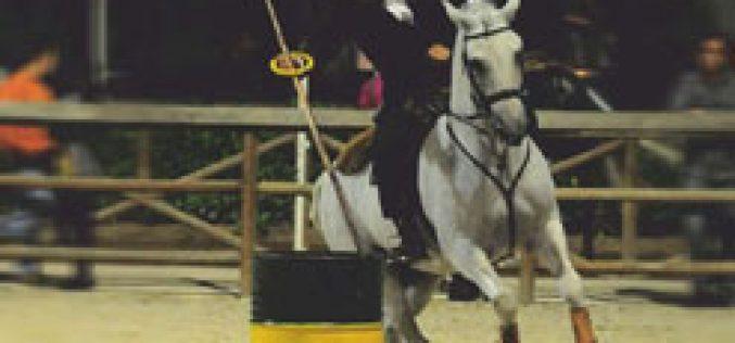 Campeonato Nacional de Equitação de Trabalho 2013 arranca este fim-de-semana em Évora