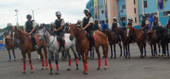Governo do Equador pretende adquirir 150 cavalos