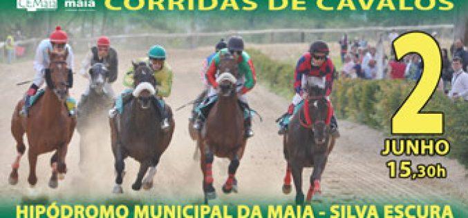 5ª Jornada do Campeonato Nacional disputa-se na Maia!