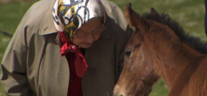 The Queen spends birthday watching thoroughbreds being trained