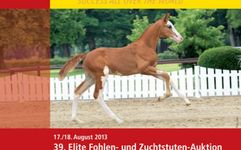 39th Elite Foal and Broodmare Auction in Verden