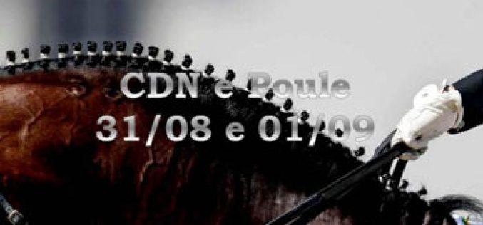 Abertas as inscrições para o CDN/Poule na Beloura