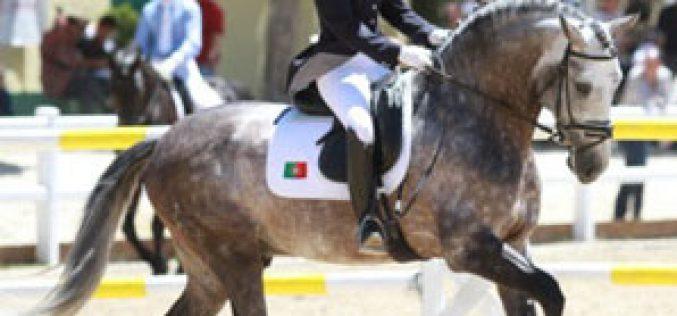 Maria Caetano no Festival Equestre de Verden