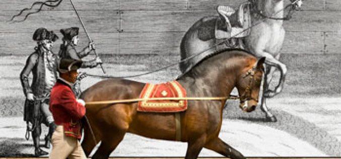 Escola Portuguesa de Arte Equestre com espetáculos em  «Marselha – Capital Europeia da Cultura»
