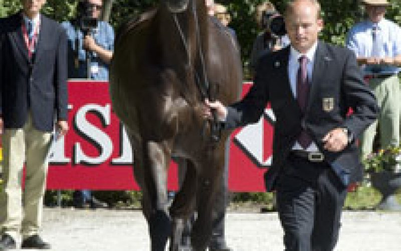 HSBC FEI European Eventing Championships 2013: Sun smiles on horses and riders at Malmö