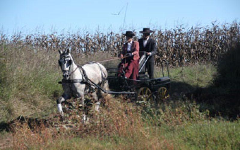 «Pegões a Cavalo» em Setembro