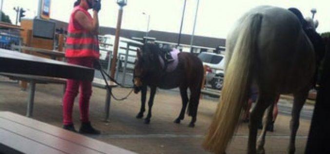 Amazona a cavalo foi multada no McDonalds