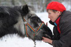 World's oldest Shetland pony dies in Berlin