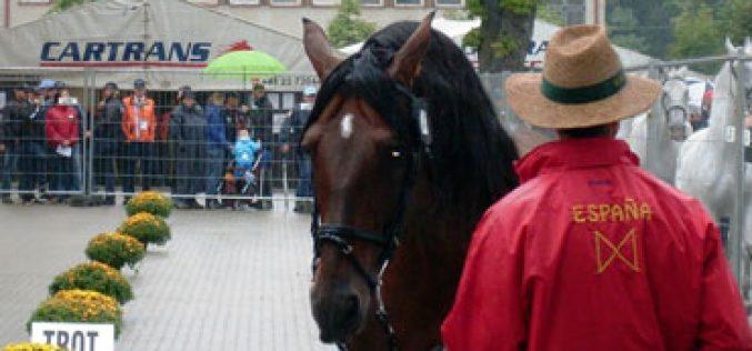 3 Cavalos reprovam no vet-check na Eslováquia (Actualizada)