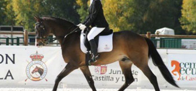 Ouro para Natalia Quintana no Campeonato de Espanha de Paradressage 2013