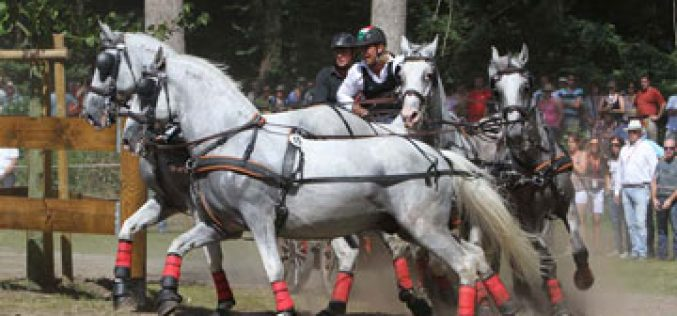 FEI European Four-in-Hand Driving Championships return to Hungary after 42 years
