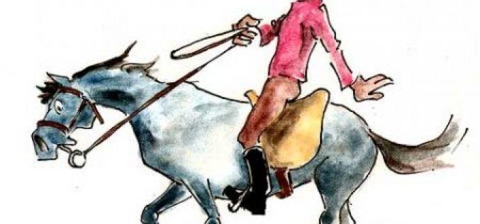 Dica do Mês: Deslize da sela em cavalos de desporto