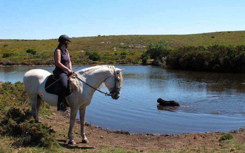 O mundo também se descobre a cavalo