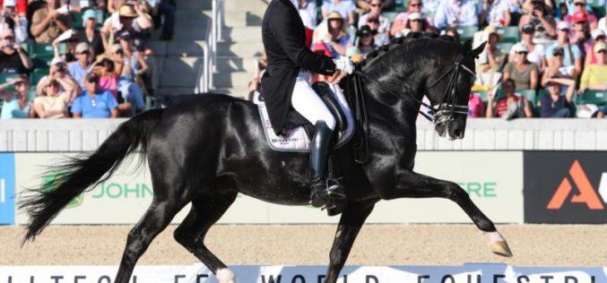 JEM 2010: Holanda leva ouro na Dressage por equipas
