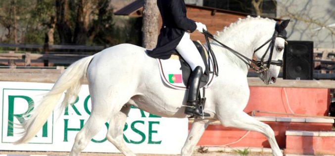 Considerações sobre a Equitação Portuguesa