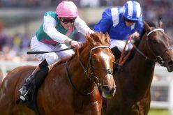 Podem as corridas de cavalos competir contra o jogo online?