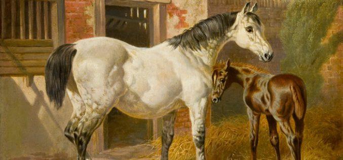 John Frederick Herring (1795-1865)