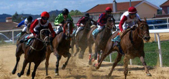Resultados da 6ª jornada das Corridas de Cavalos a Galope e Trote na Golegã