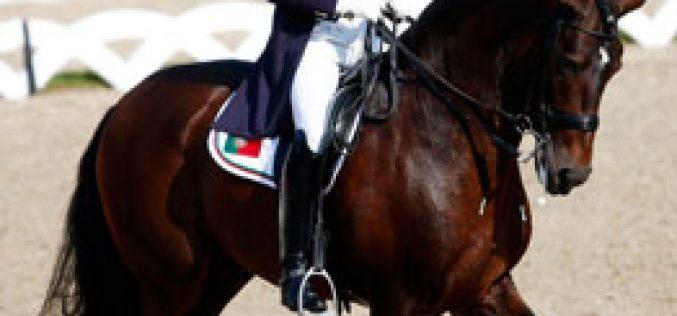 O bom nome de Portugal e dos seus cavalos