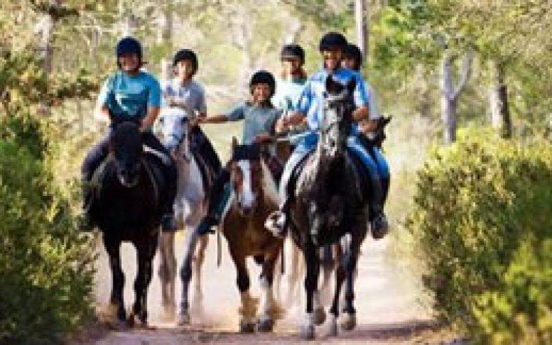 Federação Equestre Espanhola coloca em marcha plano de turismo equestre