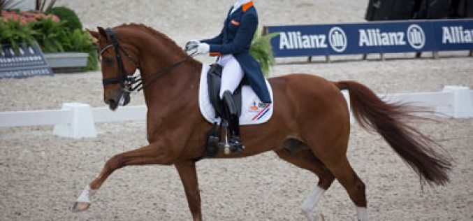 Dutch dominate at Rotterdam as Cornelissen and Parzival show sparkling form