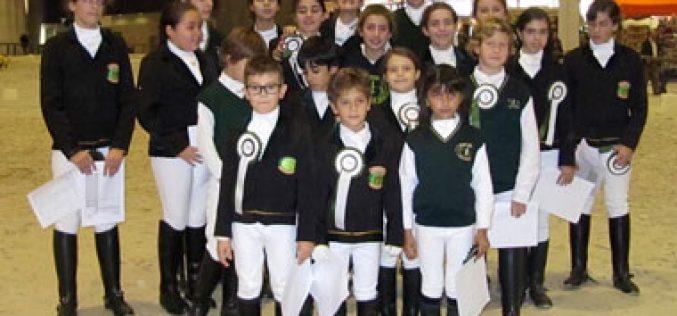 5ª Jornada do Trofeu Dressage Póneis realiza-se nos Açores