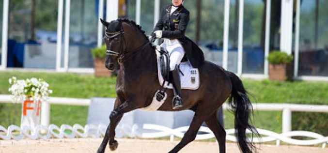 Germans and Dutch divide the gold at European Dressage Championships in Arezzo