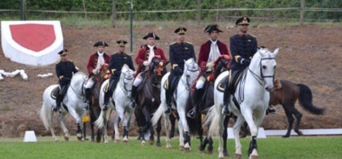 Gala Equestre junta Coudelaria Nacional e Alter Real