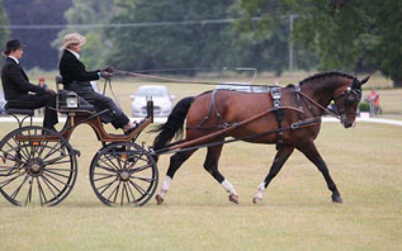 Sandringham Estate hosts successful FEI World Para Equestrian Driving Championships 2014
