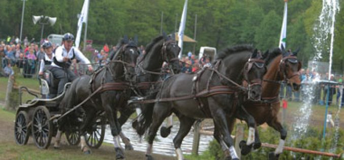 WEG 2014:Four-in-hand drivers ready for titanic battle