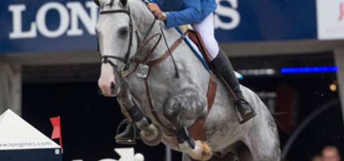Dutch and German studbooks dominate at Lanaken