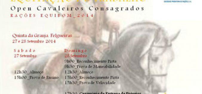 Felgueiras recebe a Final do Campeonato Regional de Equitação de Trabalho