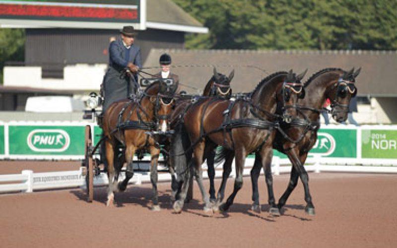 WEG 2014: Dutch drivers take an early lead