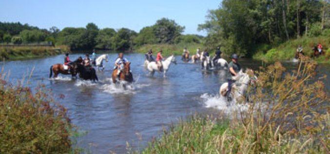 Passeio Equestre de Esposende mobilizou 4 dezenas de cavaleiros